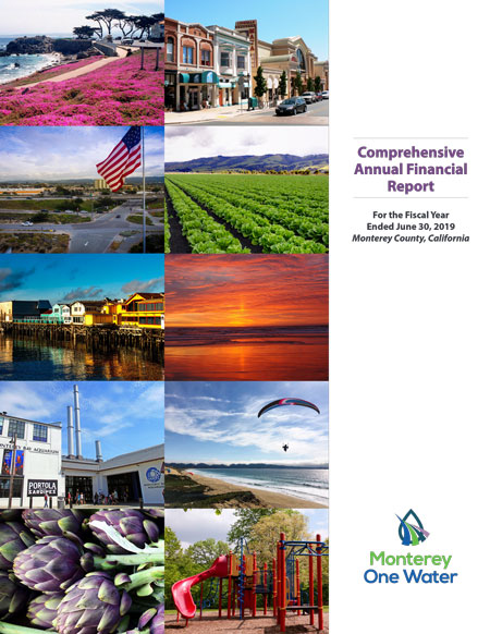 2018 to 2019 Comprehensive Annual Financial Report Cover